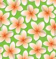Bright frangipani pattern in format vector image