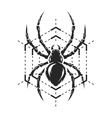 Spider and web monochrome symbol vector image