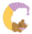 Baby Bear vector image
