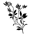 Tree branches silhouette with lot of leaves vector image vector image