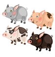 Four spotted cartoon pigs different colors vector image