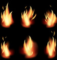 fire flame set on black background vector image