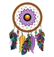 Hand drawn colored dreamcatcher vector image