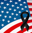 usa mourning vector image