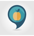 Apricot flat pin map icon Fruit vector image