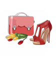 Beautiful Red shinning Shoes and bag Accessory vector image