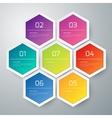 infographics hexagons vector image