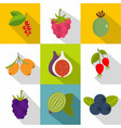 healthy fruits icons set flat style vector image