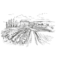 Vineyard hand drawn realistic vector image