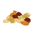 Mixed nuts vector image