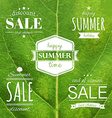 Green Leaf Texture With Summer Label vector image vector image