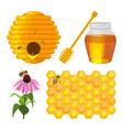 set of beekeeping elements beehive vector image