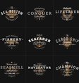 Set of Hipster Vintage Labels Logotypes Badges for vector image