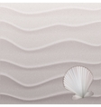 Marine background with seashell on sand vector image vector image