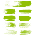green brush strokes the perfect backdrop vector image vector image