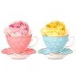 rose in teacup vector image