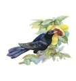 Watercolor exotic bird and tropical fruits vector image