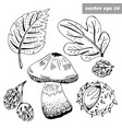 ink fall items vector image