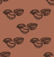 Seamless Pattern with Hand Drawn Coffee Beans vector image