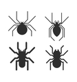 poisonous spiders vector image