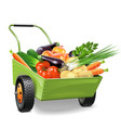 Wheelbarrow with Vegetables vector image