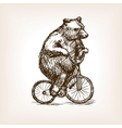 Circus bear on bicycle hand drawn sketch vector image