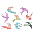 Graceful colorful flying swallow birds vector image vector image