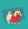 dog wear reindeer horn and sweater happy new year vector image