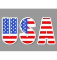 USA letters with flag background vector image