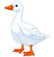 Cartoon goose vector image