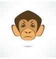 Angry monkey vector image vector image
