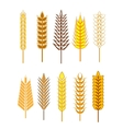 Cereal ears icons set vector image vector image