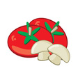 tomato and mushrooms vector image vector image