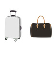 Luggage set vector image
