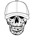 skull in baseball cap vector image