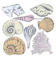 Shell set vector image