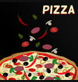 pizza and ingredients on black background vector image