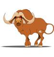 Buffalo cartoon vector image