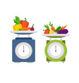 kitchen scales with vegetables vector image