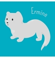 Ermine isolated Child fun icon vector image