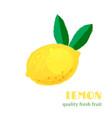 fresh lemon isolated on white background vector image