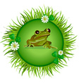 Frog on the meadow vector image