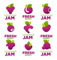 raspberry cherry blueberry berry jam and fresh vector image