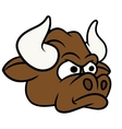 Cartoon angry bull head vector image