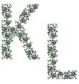 Hand drawing ornamental alphabet letter kl vector image
