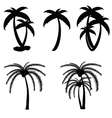palm tree in black color vector image