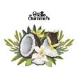 Watercolor vanilla flowers and coconut vector image