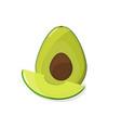 avocado and avocado slice farm fruit and vector image