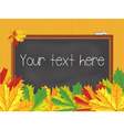 Chalkboard maple leaves back to school vintage vector image