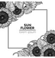 sunflower vintage design template sunflower frame vector image